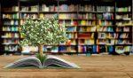 Fernie Family Literacy Day @ Fernie Heritage Library